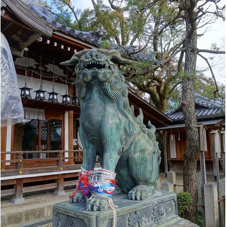 大阪市平野区「杭全神社」は金運上昇に御利益の福の種がもらえる神社